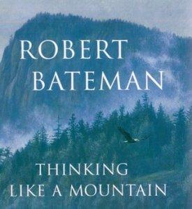 RobertBatemanMountain